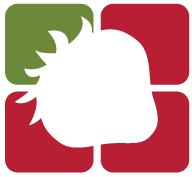 לוגו סטרוברי סטודיו